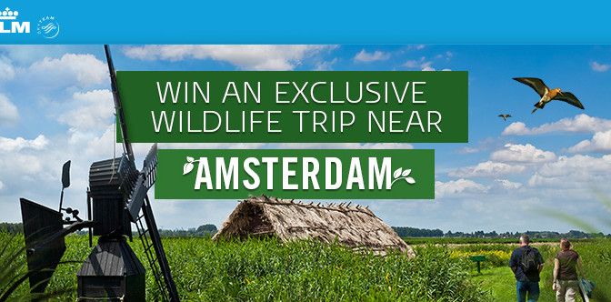 Contest win a trip to Amsterdam with KLM