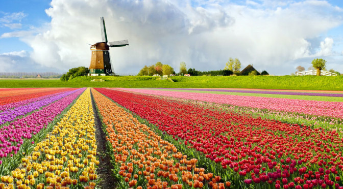 Wiatrak Holland