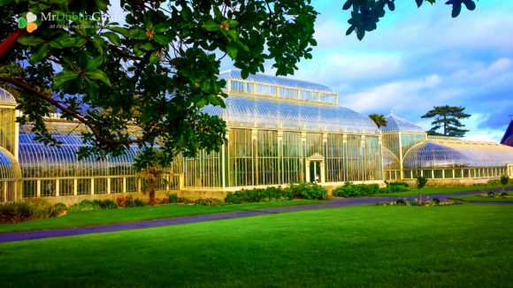 The best 25 things to do and see in Dublin National Botanic Gardens