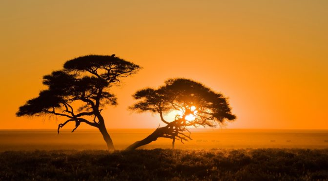 Africa tramonto